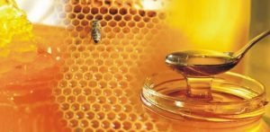 meli-honey-300x147